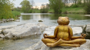 grenouille zen rivière